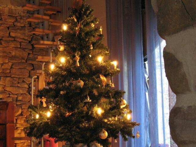 Weihnachtsbaum 10