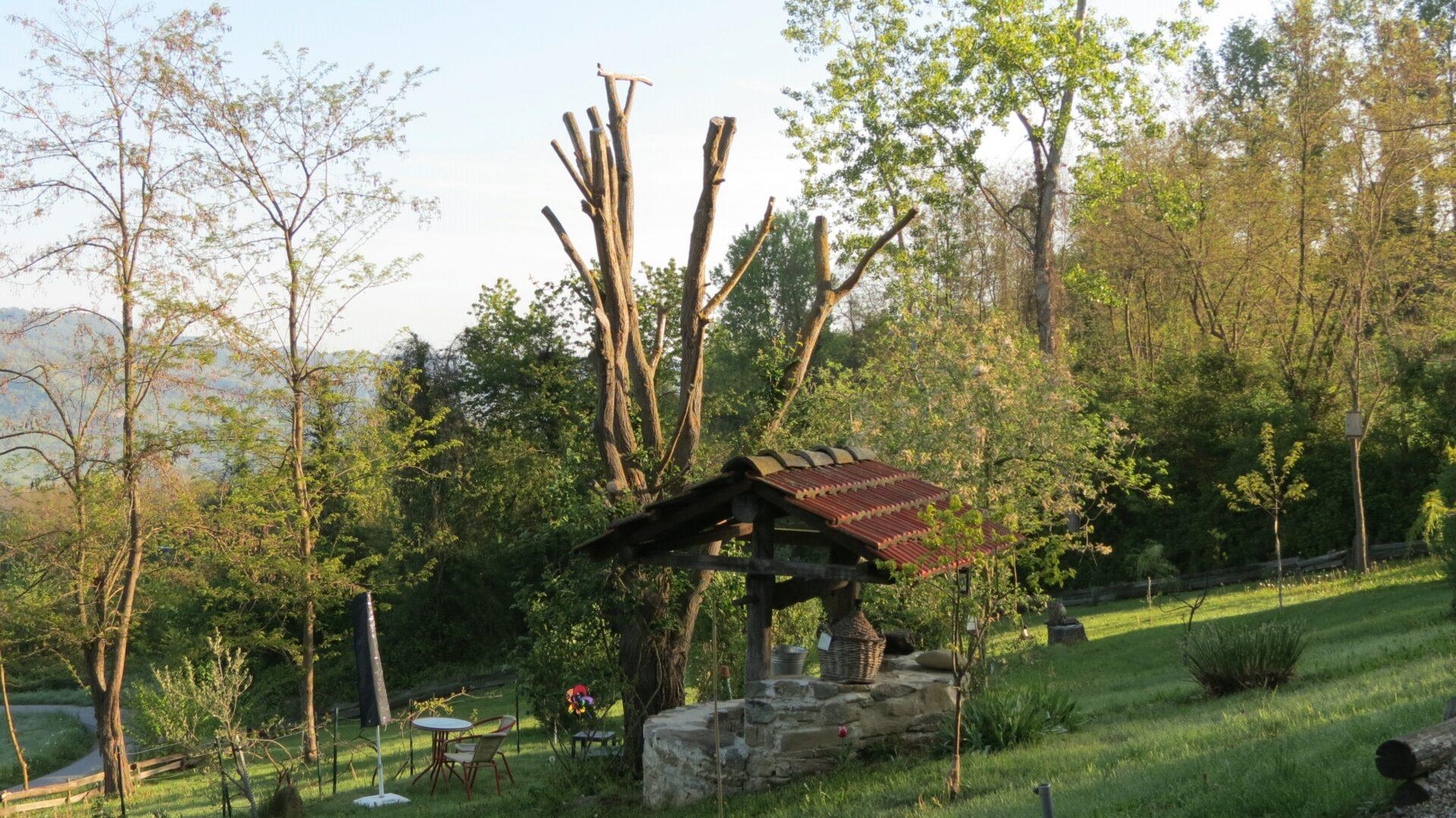 Frühling 2017 (33)