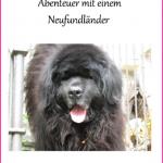 Allegro die Nummer Eins ist das erste der Hundebücher.
