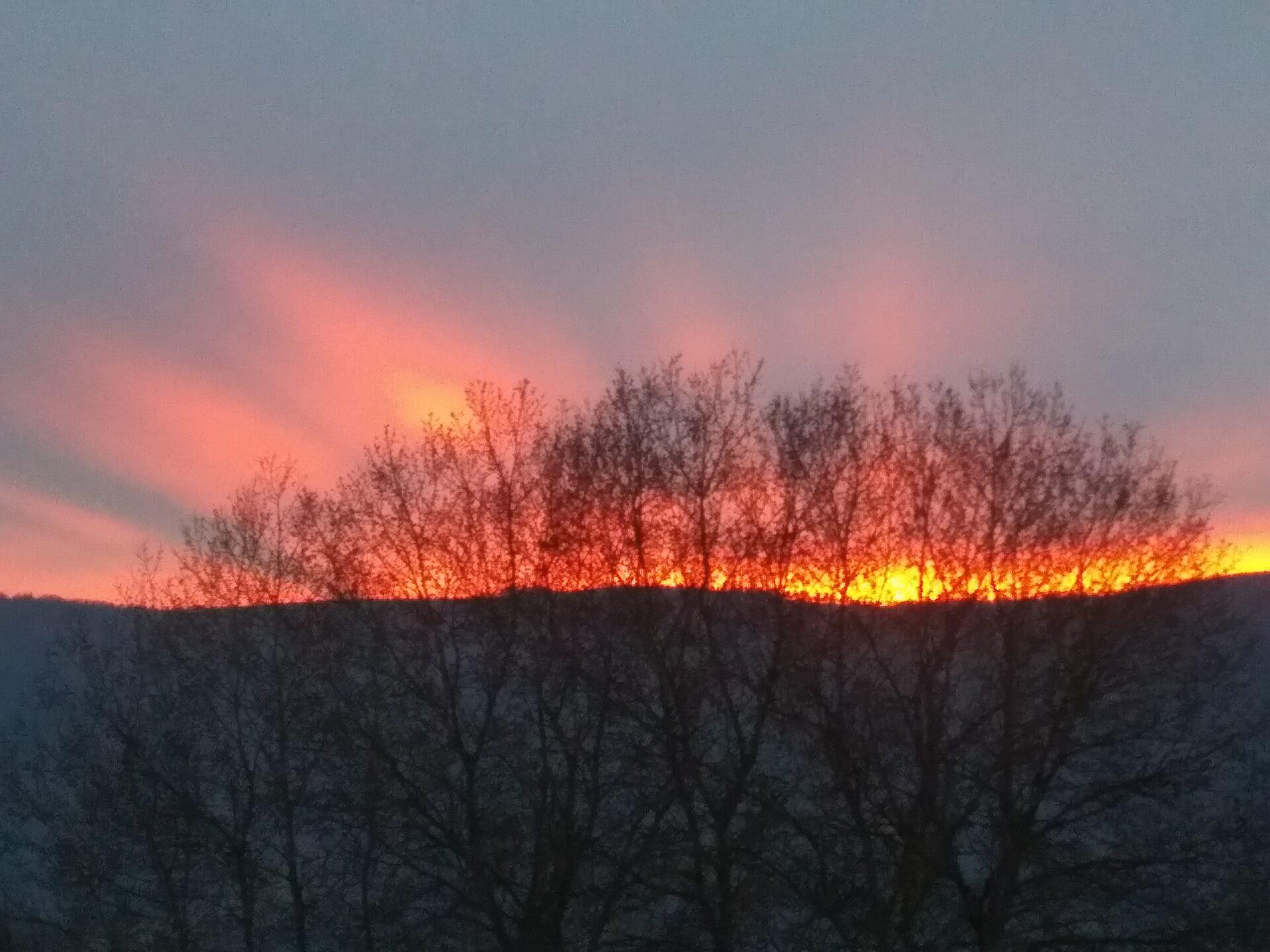 Flüssiges Gold – Sonnenuntergang